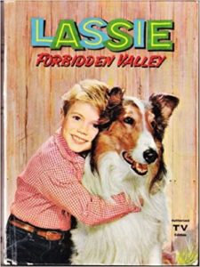 """the cover of the """"Lassie: Forbidden Valley"""" book, showing a young, blonde Timmy hugging Lassie the sable and white rough collie"""