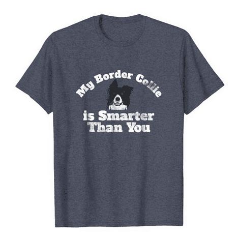 Smarter than you Border Collie