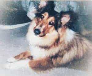 Sophie after adoption