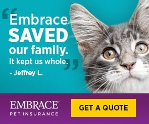 Embrace pet insurance for dogs and cats
