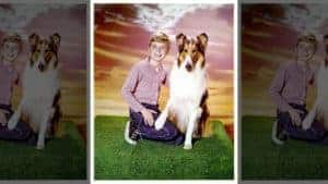 Timmy kneeling, Lassie sitting by his side, sunset background.