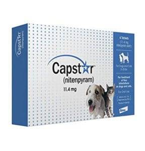 capstar oral flea treatment