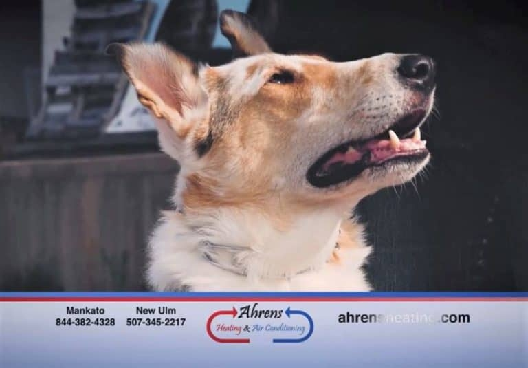 A still photo from Tag's commercial for Ahren's Heating and Cooling showing a closeup profile view of his smiling face