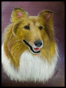 Closeup headshot painting of a happy sable and white Collie against a deep purple background
