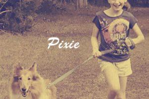 A Portrait of Pixie