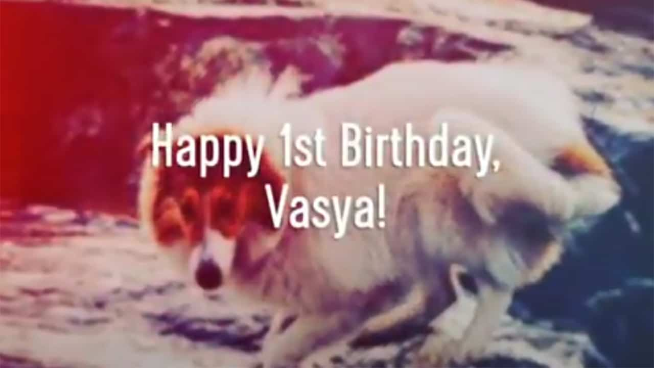 vasya 1st birthday thumbnail