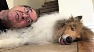 Cody lies on the ground with his tongue sticking out slightly, while Jeff lies with his head on Cody's side while talking to him