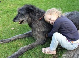 A small young girl sits on the ground with her arms wrapped around a grey scottish deerhound lying on the groun
