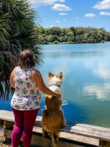 Morgan, a girl in a flowered blouse, stands with her arm around her sable merle Rough Collie Juniper, who is sitting upright on a bench. Both of them are overlooking a lake.