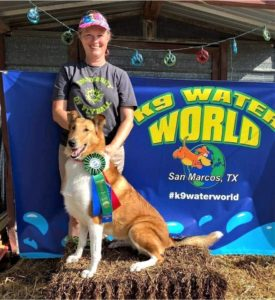 """A sable and white Smooth Collie (Collie shorthair) wearing an award ribbon sits on a bale of straw in front of a beaming woman and a sign that reads """"K9 Water World, San Marco, Texas"""""""