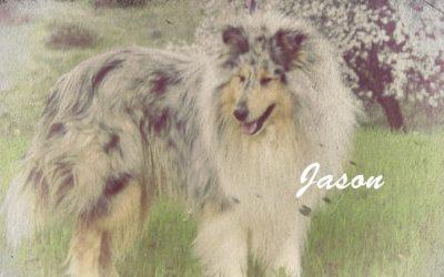 Jason Vintage