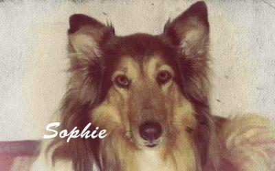 Vintage Sophie