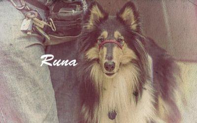 Runa Vintage