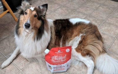 A sable and white (tan and white) Rough Collie with a white forehead star and white mushroom patch over her rump poses beside a bag of Marie's Magical Dinner Dust